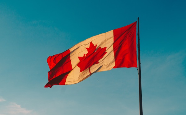 New projects advance talent development, create good jobs, and scale Canadian companies